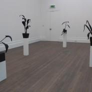 Andrew McDonald,Installation-image