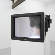 Exhibition installation image Photo: Simon Pantling
