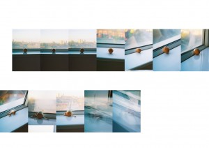 "2007, sequence of 12 6""x4"" photographs"