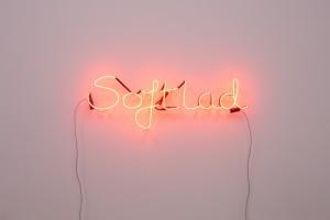 2016, neon, Photo  Simon Pantling