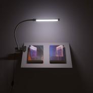 Louise Giovanelli, Prima Donna, The International 3 installation image 2 Photo Simon Pantling